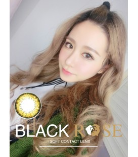 DREAMCON BLACKROSE 諾心 HAZEL