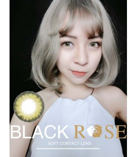 DREAMCON BLACKROSE COF BROWN